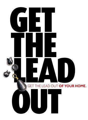 Lead-Poisoning2