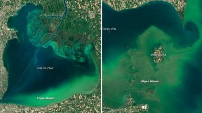 lake-erie-lake-st-clair-algae-bloom
