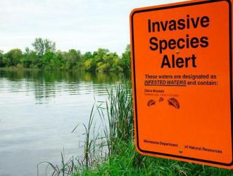 invasive-species-alert
